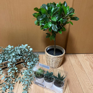人工観葉植物セット