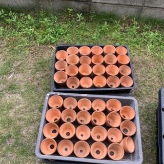 素焼き鉢2.5号トレー付き200個