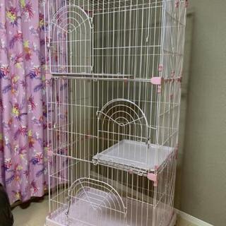 3段ゲージ 猫 ピンク