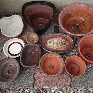 植木鉢大小 11個 差し上げます
