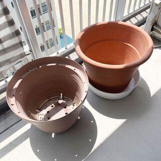 大型 植木鉢