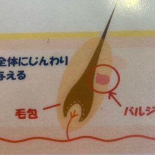 ☆SHR方式☆
