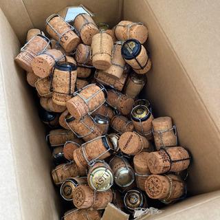 スパークリングワインのコルク栓(留め金つき)受け渡者決定