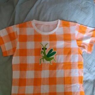 インセクトコレクションのTシャツ(子供用)
