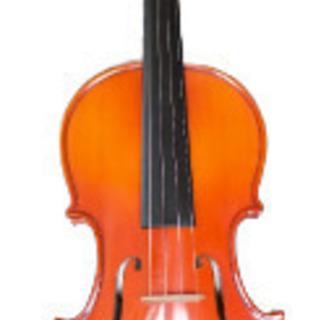 Cバイオリン