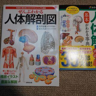 人体解剖図本2点譲ります(美品)