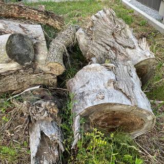 薪 燃料 薪ストーブ 木