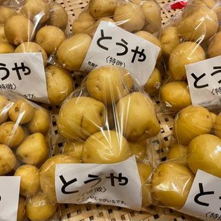5/14(金)新じゃが販売中(からかーぜ伊勢崎)露地栽培