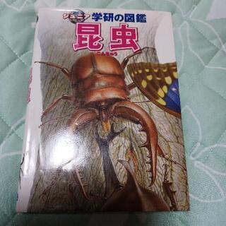 学研の図鑑 昆虫‼️