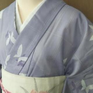 ご検討中👘駒絽  盛夏用 小紋 単衣 ★ 透け感が涼しげ 夏着物 蝶々