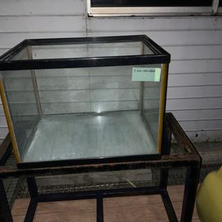 600 450 450ガラス水槽 特価
