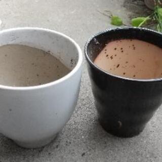 植木鉢2つ