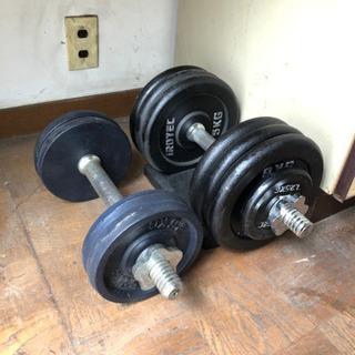 ダンベルセット(33.75kg+12.5kg)