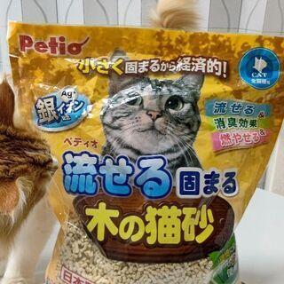 猫砂/Petio/流せる固まる/木の猫砂/1507g/開封品