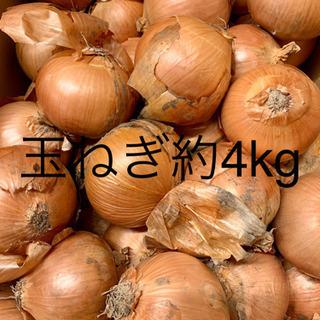 ④北海道産玉ねぎ タマネギ 4〜5キロ