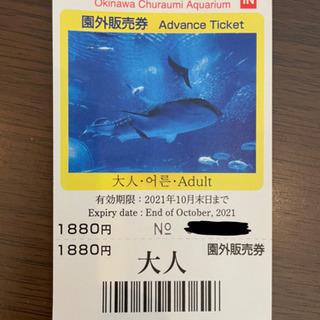 沖縄美ら海水族館 チケット