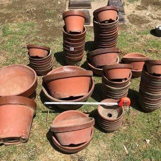 素焼き植木鉢差し上げます。