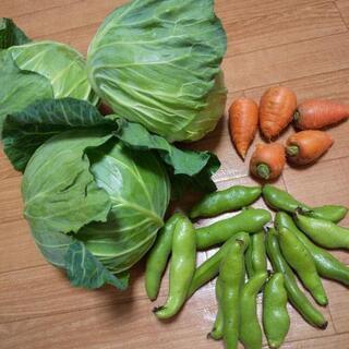 お野菜3点盛り