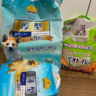 システムトイレの猫砂とペットシーツ合わせて500円