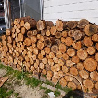 ♢杉の丸太・薪割材をお譲りします♢