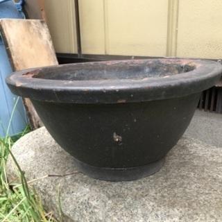 植木鉢 大