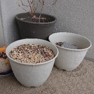 お取引中/植木鉢あげます。
