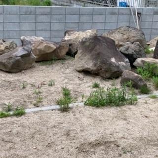 庭石 (大きい石のみ)