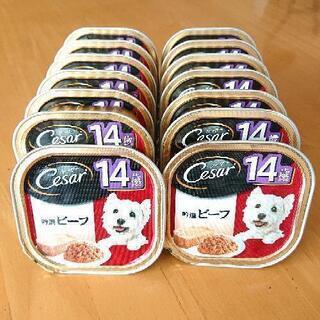 犬用フード (シニア用) 14個(+おまけ1個)まとめて