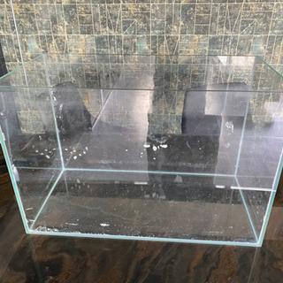 水槽 アクアリウム
