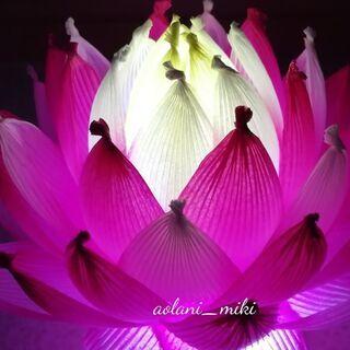 紙で作る蓮の花~ハスワーク~