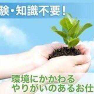 環境調査の補助スタッフ【激レア!高収入・即日勤務OK・土日祝休み】