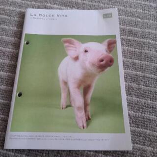 A5サイズかな? 豚さんノート