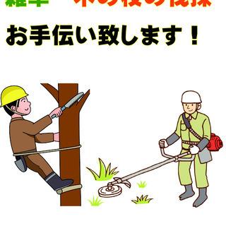 千葉県内全域 関東近県 草刈り 枝払い 直径150cm位までの木...