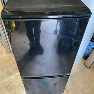 SHARP 137L 冷凍冷蔵庫 清掃済!