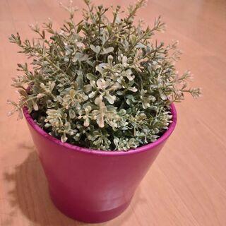 IKEA 造花グリーン