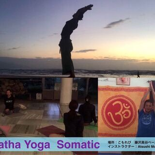 Ahimsa Yoga Somatic Hatha Yoga 藤...
