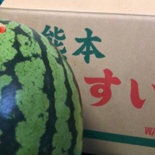 5月21.22.23 野菜果物テント売