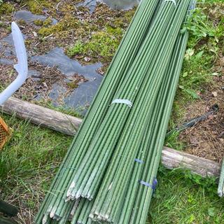 農業資材 イボ支柱 210cm×1.6cm 1セット20本