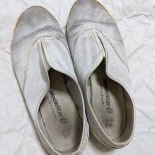 某付属中学校指定 上履き 上靴 23.5センチ