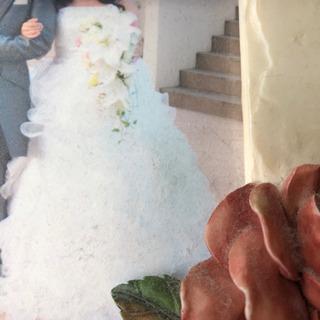 【値引き可能 定価値引き可能25万】ウェディングドレス ドレス ...