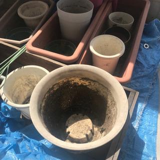 植木鉢 無料で差し上げます。