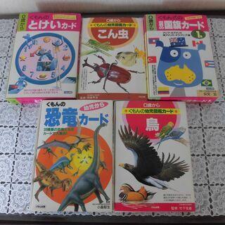 くもん の幼児図鑑カード 5個