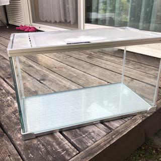 水槽 ガラス