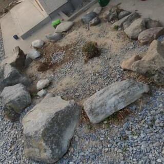 庭石 必要な方、いかがでしょうか?