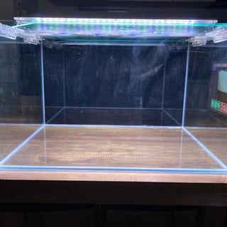 水槽60cm(ライト2本付き) - 大津市