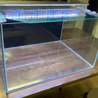 水槽60cm(ライト2本付き)