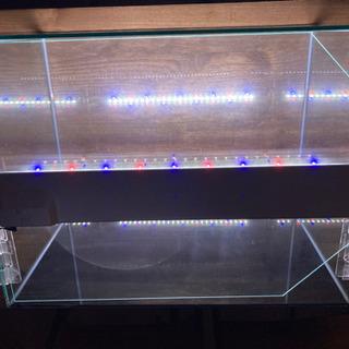 水槽60cm(ライト2本付き) - 売ります・あげます