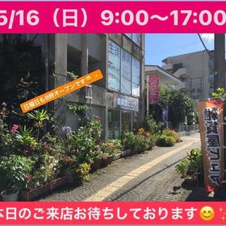 5/16(日)9:00〜17:00