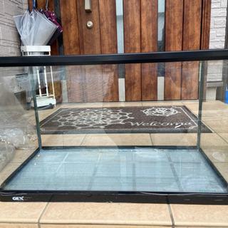 <譲ります>水槽60cm GEXフレーム付曲げガラス