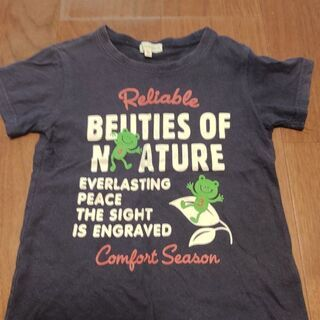 Tシャツ2枚&ハーフパンツ(サイズ100) - 新潟市
